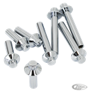 CHROME HEAD BOLT KITS