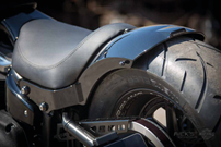 RICK'S MILWAUKEE EIGHT SOFTAIL REAR FENDERS