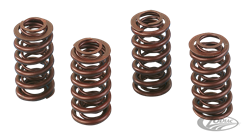 ANDREWS VALVE SPRING SETS