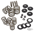 VALVE SPRING KIT FOR KNUCKLEHEAD