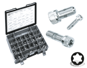 CHROME PLATED TORX HEAD SCREWS ASSORTMENT